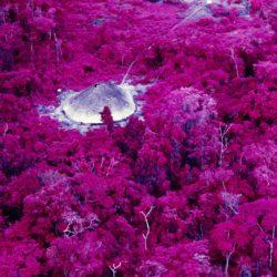 Maloca near the Catholic mission at the Catrimani River, infrared film, Roraima State, Brazil, 1976.